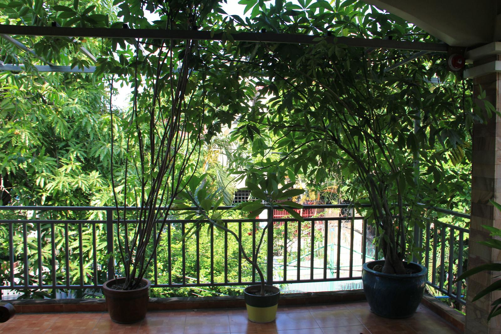 Balcony-001